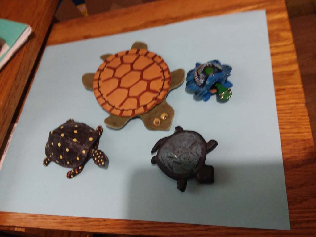 A group of different turtles. Spots, Blbble-head, magnet and leather.