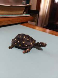 Picture of a turtle with yellow and red  spots on his shell and body